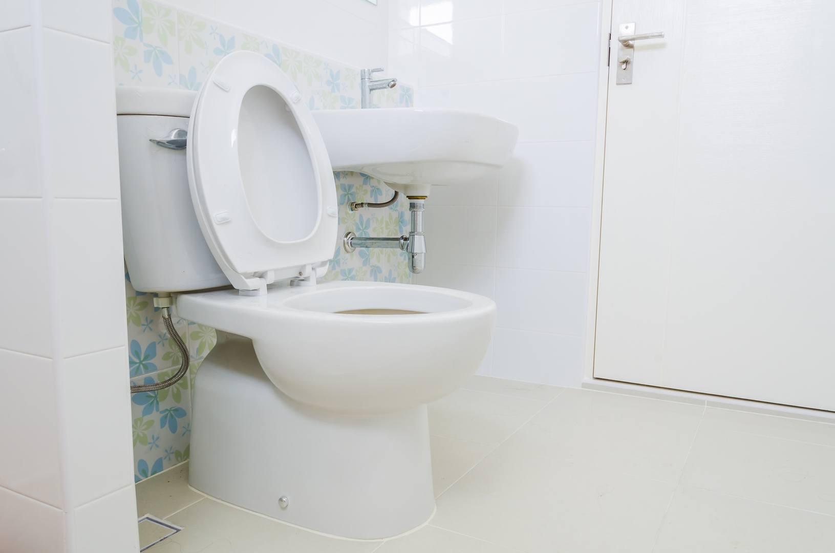 Toilets Repairs